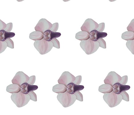 Rlilac_orchid_white_side_shop_preview