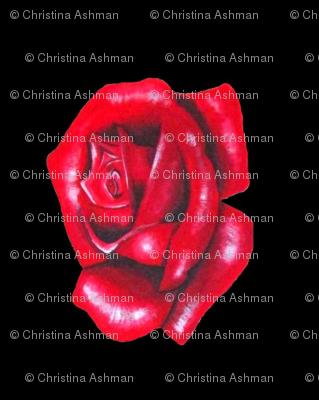 Rose black side