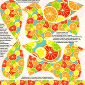 Rrhanging_flowerbirds_citrus_copy_shop_thumb