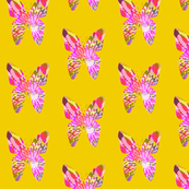 Yellow & Pink Butterflys