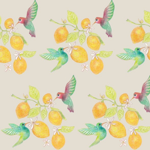hummingbirds and lemons
