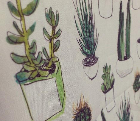 Watercolour Cacti and Succulents