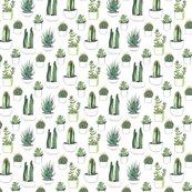 Rrgreen_and_white_cacti_more_complex_shop_thumb