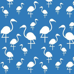 Flamingos in white on blue