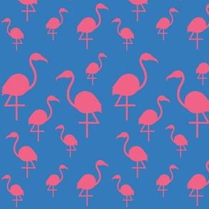 Flamingos in pink on blue