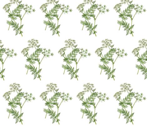 Elegant Queen Anne fabric by eyeswideshut28 on Spoonflower - custom fabric