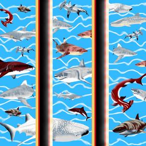 Shark_Haven... Aqua