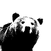 Black Bear // Pillow Cover