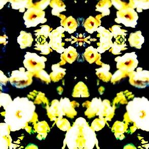 tumblr_mmz0bqFU6u1rkogzbo1_500-ed