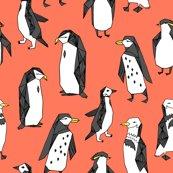Rhuddle_of_penguins_carrot_shop_thumb