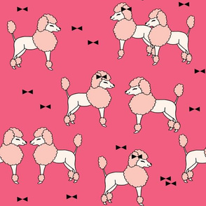 poodle // poodles dog cute dog pet pets pink poodles