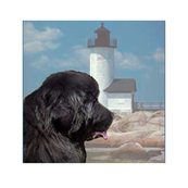 newfy_lighthouse_quiltblocks