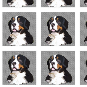bernese_mountain_dog_quilt_block