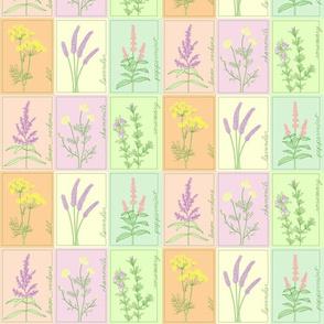 Herb Garden Cheater quilt