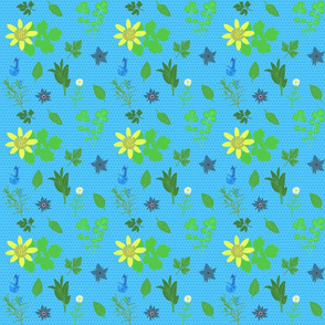 herbs on blue background