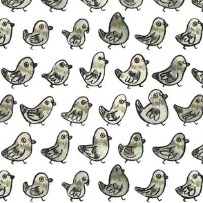 Pigeons! (small)