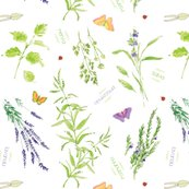 Rrrrrrrrherbgardenspoonflower.alexcolombo_shop_thumb