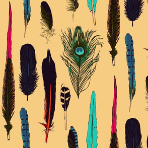 A gallery of feathers