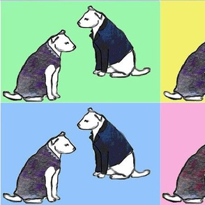 dogs with jackets and dresses with colorful blocks background