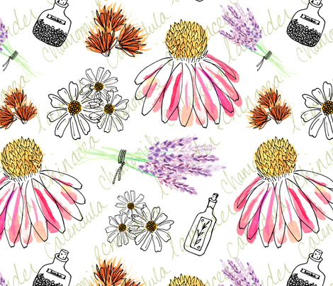 Healing Herbs fabric by radianthomestudio on Spoonflower - custom fabric