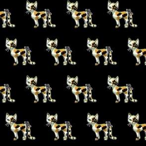 StarSkull Cat