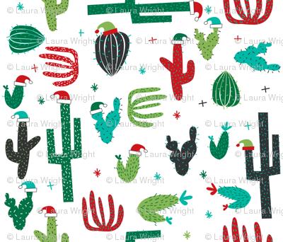 christmas cactus on white
