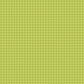 Fresh Green Gingham