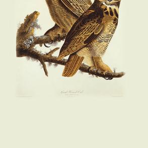 02-great-horned-owl