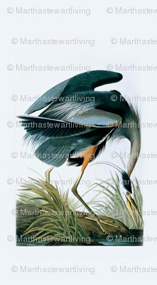 04-great-blue-heron