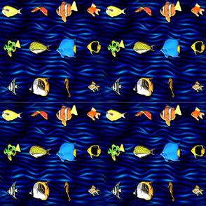 Fish_on_blue