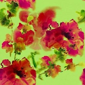Magenta Flowers on Light Green