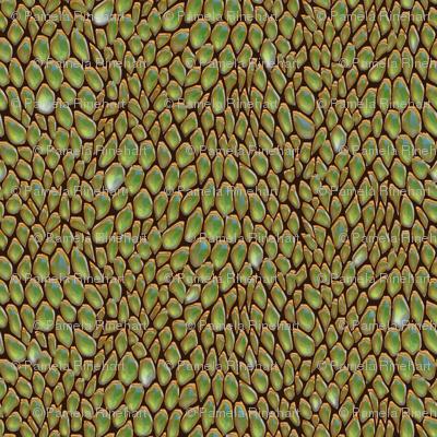 sparkle jade metal dragon scales