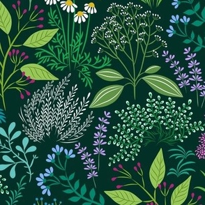 delightful herb garden