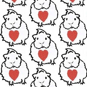 Guinea pig hearts
