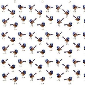 Mini Blue WRENS on white, Wren No. 2