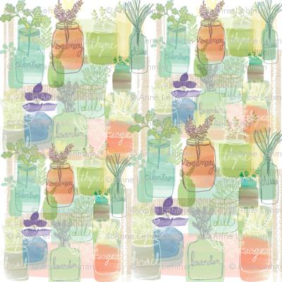 Herb Garden in Jars