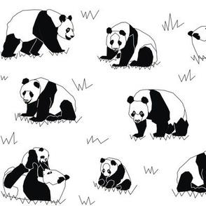 Panda small scale