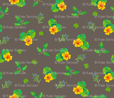 Herbal Kaleidoscope
