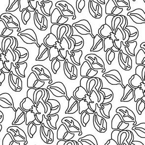 lace_design_4