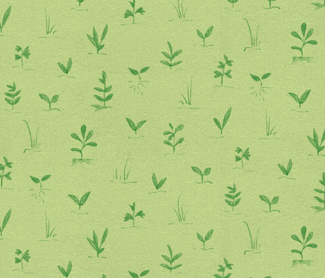 Seedlings fabric by forest&sea on Spoonflower - custom fabric