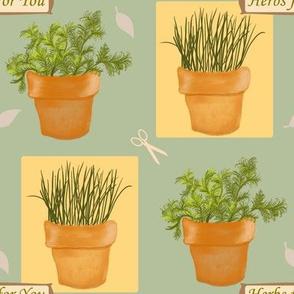 Herbs4u