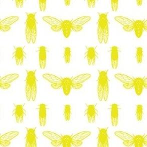 Cicadas in acid yellow