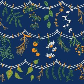 Herbs + Vegetable lines