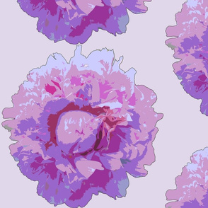 peony big--lilac