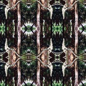 palmetto | moss | july