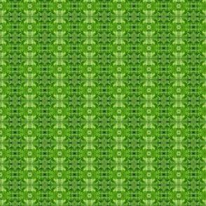 Lettuce - green