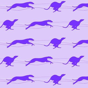 Running whippets purple/lilac