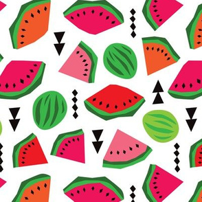 Water Melon summer fruit illustration pattern