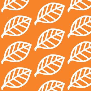 Leaf white on orange