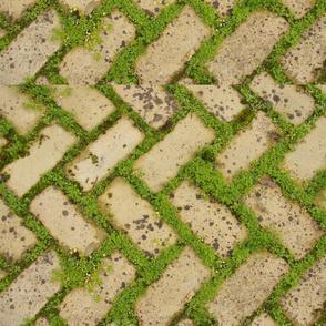 Moss & Bricks